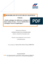 Mémoire_de_Maxime-SAWADOGO