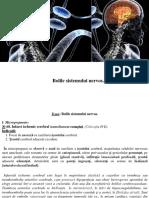 12. Bolile sistemului nervos central_1
