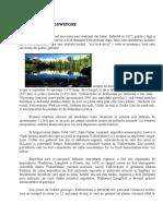 www.referat.ro-PARCUL_YELLOWSTONEe80b4