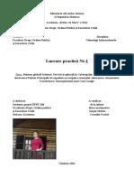 Lucrare practica nr 1. Dubceac Ecaterina, Tehnologii informationale