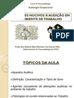 Audiologia Ocupacional Agentes Nocivos 2017