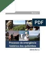 Módulo I - Emergência sociohistórica dos quilombos