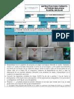 MINUTA ACTIVIDADES SEMANALES DEL 4 de mayo DEF