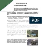 Caracteristicas Dde Los Ecosistemas