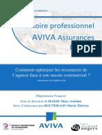 Mémoire professionnel AVIVA Assurances
