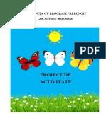 Proiect de activitate-doc