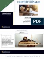 Acciones constitucionales... (2)