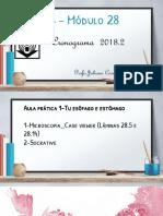 CRONOGRAMA_MODULO 28_2018.2_