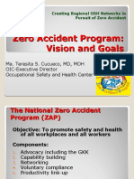Doc Tess Zero Accident Program for ZAP conf 09