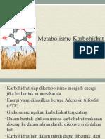 Metabolisme Karbohidrat - Glikolisis