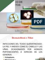 Diagnostico de Dermatofitos