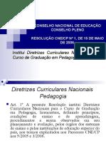 Diretriz Curricular Pedagogia - Relatório André