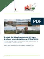 Produir Mg Travaux de Remise en Etat Des Infrastructures de Drainage Et de Protection Contre Les Inondations Etude d Impact Social Et Environnemental 2019