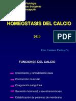 calcemia-010
