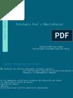 Anestesia troncular2