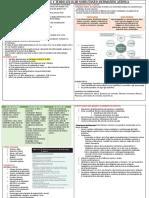 Resumen Dermatitis Atopica