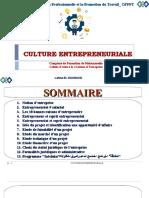 1 Cour Culture d'Entreprenariat