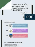 Milexandra López_ 73 _Niveles de Atención, De Prevención y Atención