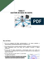 Tema V- Gestion de Base de Datos