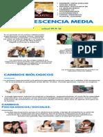 Verde Orgánico Natural Fotosíntesis Biología Infografía