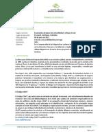 Términos-de-referencia-especialista-minas-sostenibles-Sur-America-final