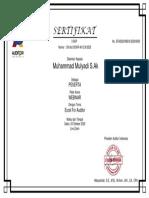 Seminar Excel for Audit