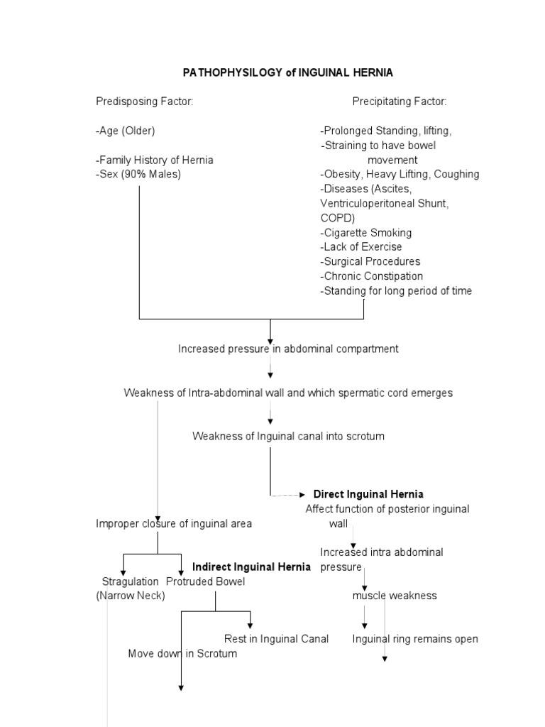 Cleoustin Pathophysiology Of Inguinal Hernia