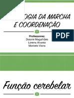 6 Semiologia Da Marcha e Coordenacao PDF