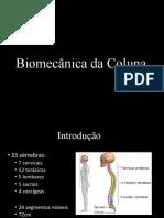 bimecanica da coluna