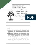 yeki-tree