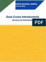 Guia Curso Introductorio 2018-1