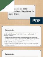 Fiscalização de canil clandestino e diagnóstico de maus-tratos - SLIDES
