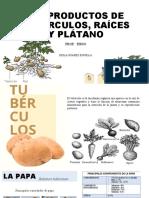 SUBPRODUCTOS DE TUBÉRCULOS, RAÍCES Y PLÁTANO