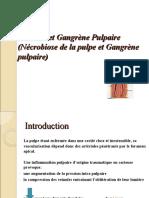 Course 11 - Necrose Et Gangrene