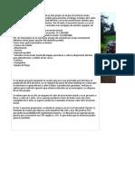 Ejemplo Presentación Proyecto de Inversión.