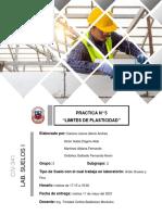 Informe de Limites Plasticos