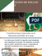 7. ALIMENT. D POLLOS DE CARNE