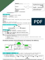 koncepcje i systemy komunikowania