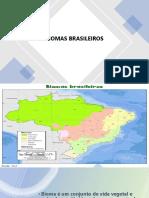 BIOMAS BRASILEIROS slides