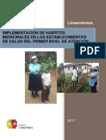 MSP Lineamientos Implementaciвn Huertos Medicinales PNA 2017