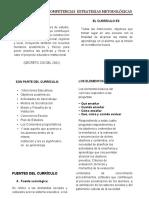 CURRICULO Y COMPETENCIAS II