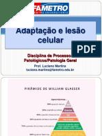 202042_2251_Aula 3 - Adaptação e Lesão Celular