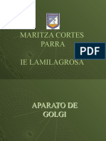aparatodeGolgi-PPT