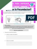 Ficha-Que-es-la-Fecundacion-para-Quinto-de-Primaria