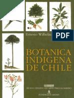 Botanica Indigena de Chile 138pages