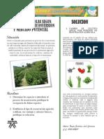 especies agrícolas según objetivo de la reconversión y mercado potencial