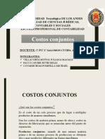 Juliana Expo Costos Conjuntos (2)