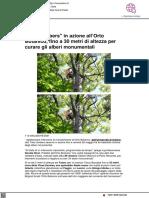 Tree clibers in azione all'Orto Botanico - Vivereurbino.it, 25 maggio 2021