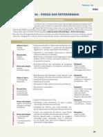 exames_portugues_12_exercicios