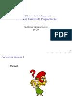 ConceitosBasicos_BCC201_2